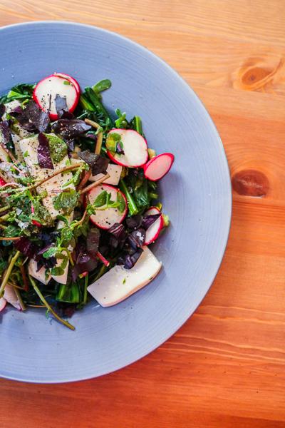 purslane-simple-summer-salad 2