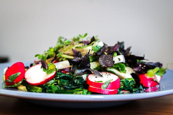 purslane-simple-summer-salad 3